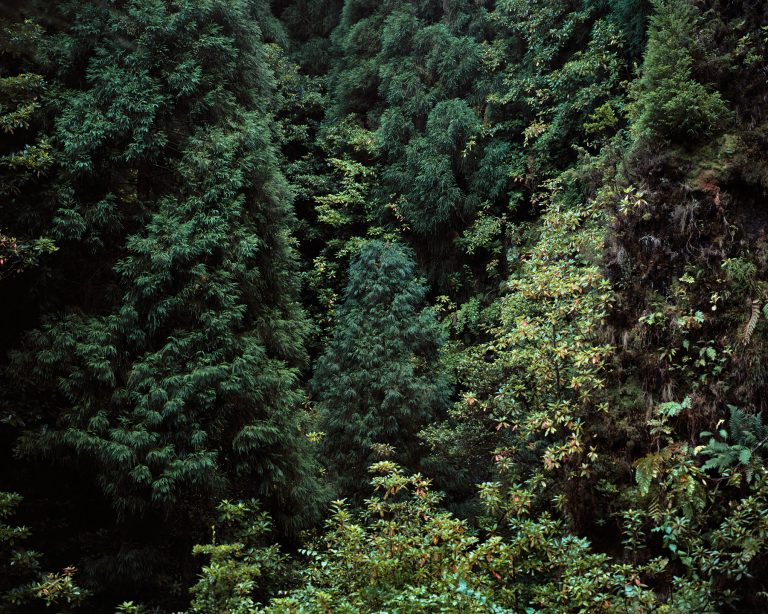 Azores 4 | 120x150cm | 3 + 1 P.A.