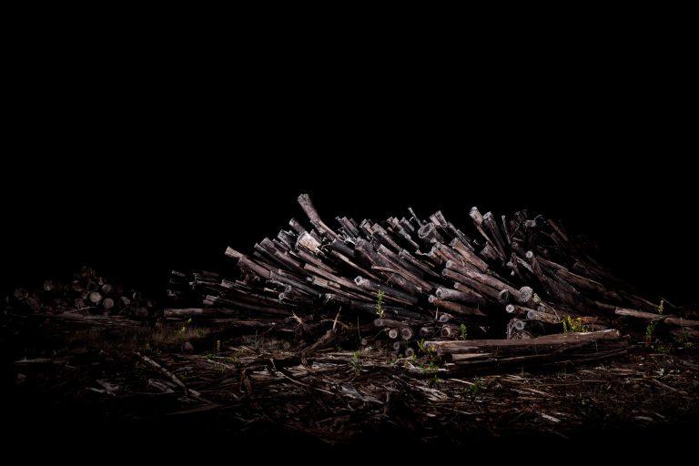 night shot 2 | 100x150cm | edição 3 + 1 P.A.